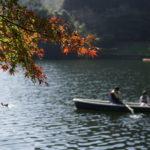 伊自良湖の紅葉写真撮影  2018/11/11 (岐阜県山県市)